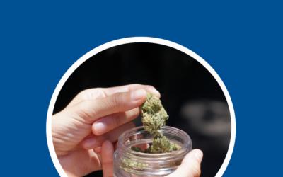 Vorstoß in der Drogenpolitik